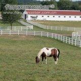 Frontière de sécurité de cheval