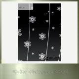 Spiegel-Blumen-Drucken-dekoratives Farben-Edelstahl-Blatt für Schrank