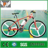 2016卸し売り安い電気バイクの中国の電気バイク