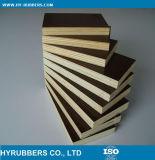 Panneau imperméable à l'eau de PVC de matériau de construction