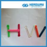 Legame dentale della legatura con molti colori