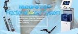 Laser fraccionario del CO2 del RF del equipo del salón de belleza del rejuvenecimiento de la piel el mejor