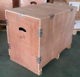 0.55~200kw-Cast motore a corrente alternata A tre fasi del ferro Frame-Ie2-