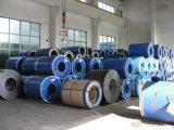 De gegalvaniseerde Strook van het Staal van China op Verkoop