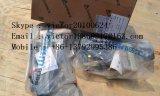 4190000605 pièce de rechange de Sdlg XCMG Liugong Shantui Xgma Lonking de serrure de porte