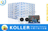 Прогулка в комнате рефрижерации Koller холодной для хранения кубика блока льда
