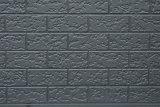 Scheda rivestita della parete del metallo per la villa