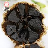 負けた重量のAnti-Aging発酵させた有機性高い純度の黒のニンニク100g