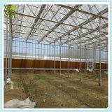 Casa verde do controle agricultural do clima