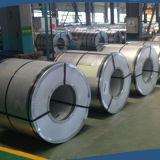 rol van het Blad van het Scherm van het Metaal van 2mm de Roestvrij staal Geperforeerde