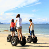 Auto della batteria del Li che equilibra motorino a ruote due da vendere