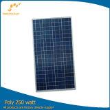 Polykristalliner Sonnenkollektor (SGP-250W)