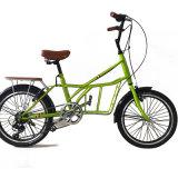 普及した炭素鋼フレームの子供か学生または大人のバイク(NB-009)