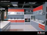 طلاء لّك الصين سعر صغيرة مطبخ تصميم