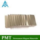 N42 de Magneet van de Zeldzame aarde met Praseodymium van het Neodymium