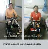 Triciclo eléctrico con discapacidad para personas de edad avanzada y persona con discapacidad con cesta