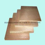 Chapas de madera de álamo Okoume Bintangor abedul enchapadas Comercial