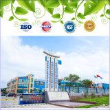 Cápsula de ginseng certificada GMP y Ginseng Softgel