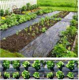 Couverture au sol tissée par pp de la lutte contre les mauvaises herbes Fabric/PP de Geotextile/PP