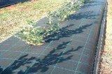 UV 저항하는 잡초 방제 직물 지표 식피