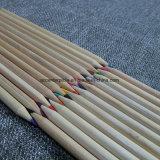 24 matite di colore per i bambini