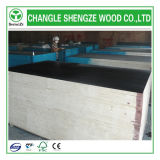 8mm~21mm Highquality Hot Sale Birch Core Film Faced Plywood