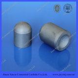 Garniture intérieure extra-dure de dôme de carbure de tungstène d'utilisation de morceau de foret de formation