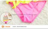 Bunter Streifen-kleine Mädchen-reizender Bikini