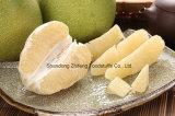 よい価格および品質の2017新しいPomelo