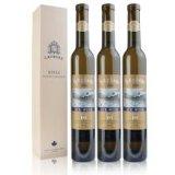 375ml garrafa AG para vinho de gelo com cortiça 18.5mm