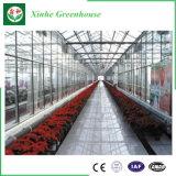 Sombrilla impermeable del invernadero del jardín del policarbonato con la casa verde de aluminio