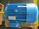 Motor de CA de la baja tensión del GOST