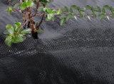 Stuoia tessuta pp del Weed del coperchio al suolo del geotessuto materiale con UV