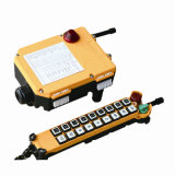 Portable Multi-Channel Industrial Wireless Crane Radio Remote Control (F21-18S)