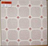 tegels van de Vloer van 30X30cm de Ceramische (3107)