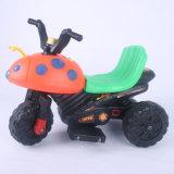 Reizender Entwurfs-mini elektrisches Motorrad-Fahrrad für Kinder von China