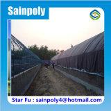 Estufa do túnel do tipo de China Sainpoly para o cogumelo