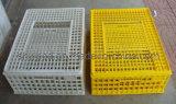플라스틱 가금 회전율 상자, 닭 수송 감금소