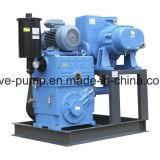 루트 승압기를 가진 회전하는 피스톤 진공 펌프 시스템