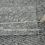 Bullnose EdgeのG418 Wave White Granite Polished Tile/Step