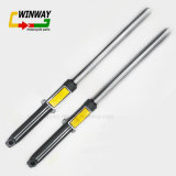 Ww-6102 Motorcycle Front Fork Front Shock Absorber para Wy125