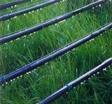 50 van de Tuin van de Druppel van de Band meters van de Slang van de Irrigatie