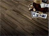 [600إكس900] تصميم جديدة [بتثلّا] زجّج أسلوب خشبيّة يصقل قرميد (569011)