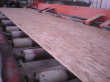 OSB3 Board for Construction /From Luli Group