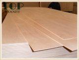 1220*2440 (4*8) contre-plaqué commercial de peuplier de 6/9/12/15/18mm/de placage d'Okoume faisceau de Combi avec la colle d'E0 E1 pour des meubles