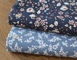 tela de la impresión 100%Cotton para la ropa de los niños de la base de la alineada