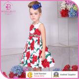 بنت قطر ثوب [بونّبيلّي] يرتدي أطفال 6225 6298