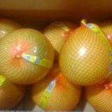 新しい穀物の新しい蜂蜜のPomeloの高品質