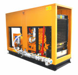 50Hz 160kw 200kVA Natural Gas Generator Silent Canopy