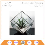Varas de vidro para decoração de casamento em casa Jardim